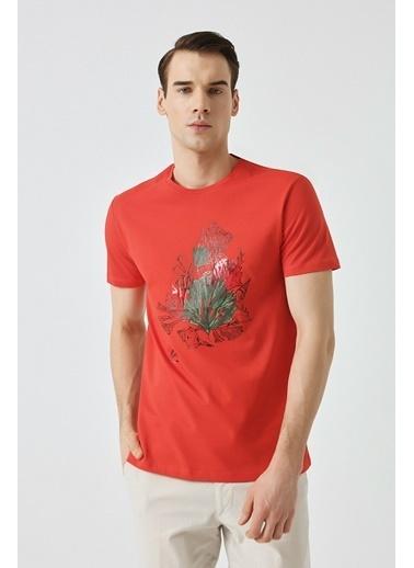 Damat Çizgili Baskılı T-Shirt Mercan